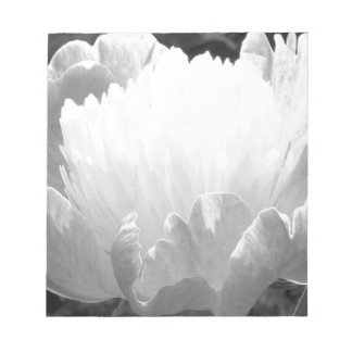 Peony in Black and White Notepad