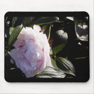 Peony with bee mouse pad