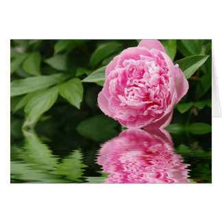 peony with reflection Philippians 1:3 Card