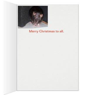 People who love Rats Card