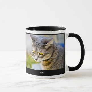 Pepin and Louis mug
