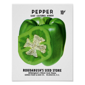 Pepper Seed Packet Label Poster