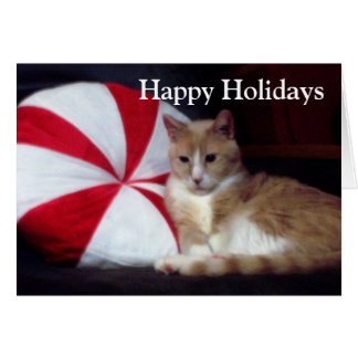 Peppermint Cat Holiday Greeting Card