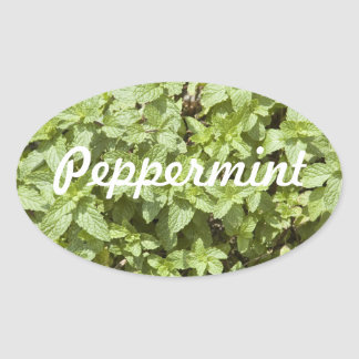 Peppermint Spice Bottle Sticker
