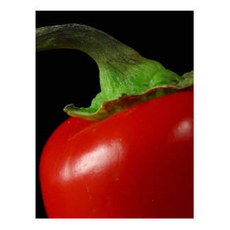 Peppers Red Stems Postcard