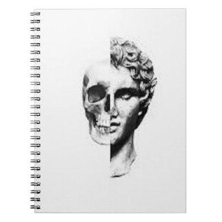 Perceptions Notebook