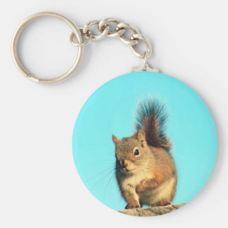 Perched Squirrel Key Ring