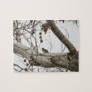 Perched Woodpecker - Jigsaw Puzzle