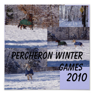 PERCHERON WINTER GAMES, 2013 POSTER