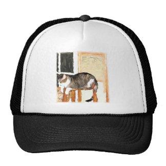 Perching Cat Digital Photograph Cap