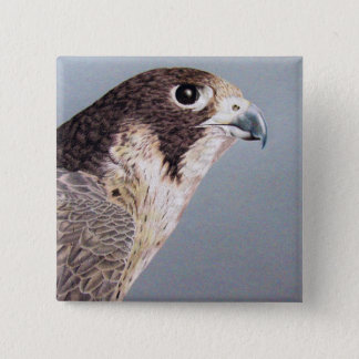 Peregrine Falcon 15 Cm Square Badge