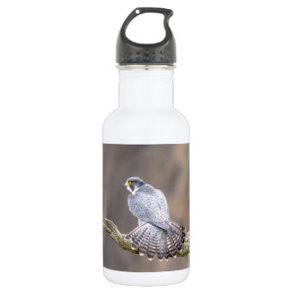 Peregrine Falcon at the Palisades Interstate Park 532 Ml Water Bottle