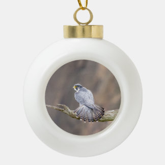 Peregrine Falcon at the Palisades Interstate Park Ceramic Ball Christmas Ornament