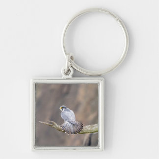 Peregrine Falcon at the Palisades Interstate Park Key Ring