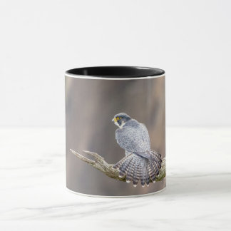 Peregrine Falcon at the Palisades Interstate Park Mug