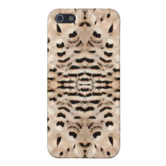 Peregrine Falcon Feathers iPhone 5/5S Cover