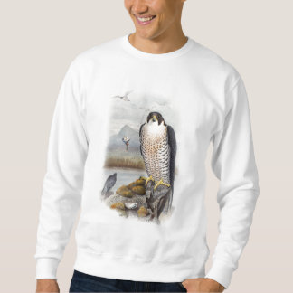 Peregrine Falcon John Gould Birds of Great Britain Sweatshirt