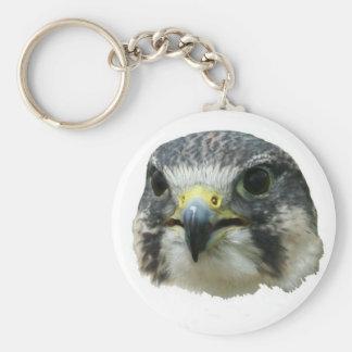 Peregrine Falcon Keychains