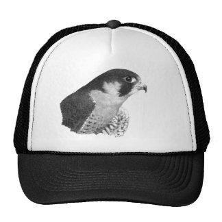 Peregrine Falcon-Pencil Cap