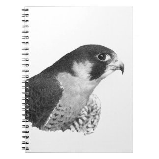 Peregrine Falcon-Pencil Spiral Notebook