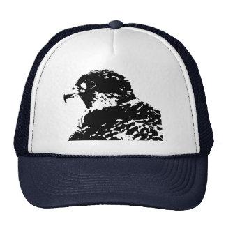 Peregrine Falconry Cap
