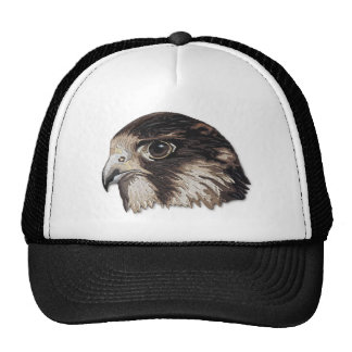 Peregrine Faux Embroidery Cap