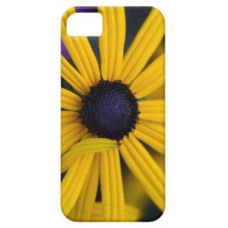 Perennial coneflower (Rudbeckia fulgida) Barely There iPhone 5 Case
