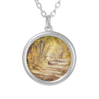 Perfect Afternoon Silver Plated Necklace