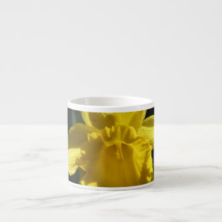 Perfect Daffodil