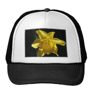 Perfect Daffodil Cap