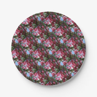 Perfect Pink Bougainvillea In Blossom Paper Plate