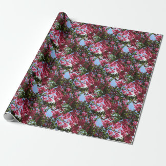 Perfect Pink Bougainvillea In Blossom Wrapping Paper