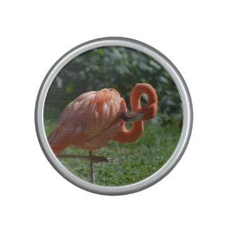 Perfect Pink Flamingo Bluetooth Speaker