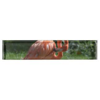 Perfect Pink Flamingo Name Plate