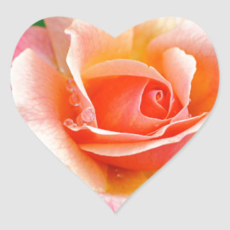 Perfect Rose in Bloom Heart Sticker