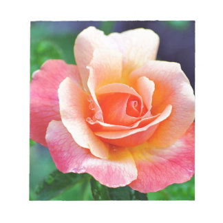 Perfect Rose in Bloom Notepad