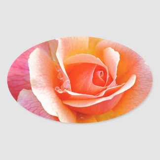 Perfect Rose in Bloom Oval Sticker