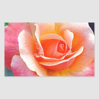 Perfect Rose in Bloom Rectangular Sticker
