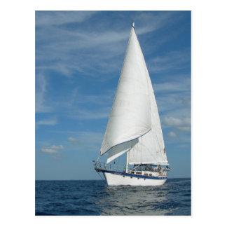 Perfect Sail  Postcard