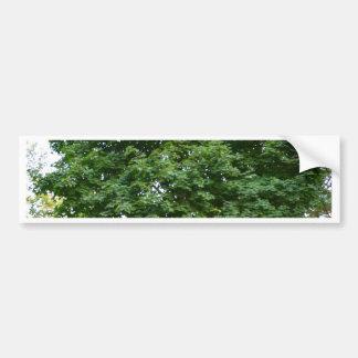 Perfect Tree Bumper Sticker