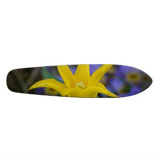 Perfect Yellow Tulip Skate Board Decks