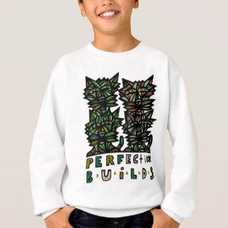 """Perfection Builds"" Boys' Sweatshirt"