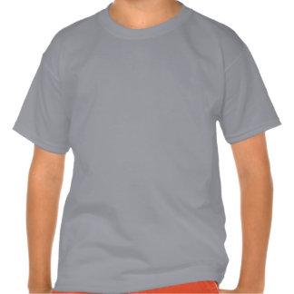 Perfection! Tee Shirt
