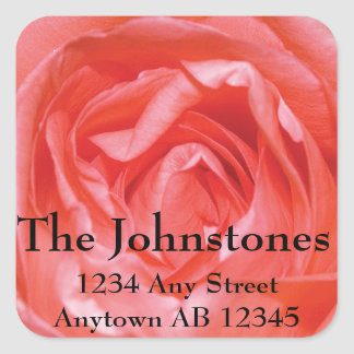 Perfectly Pink Rose Wedding Return Address Square Stickers