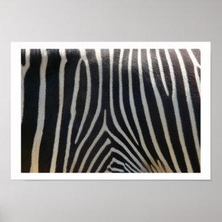 Perfectly Zebra Print