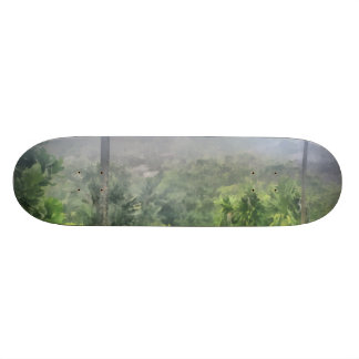 Periphery of the jungle skate boards