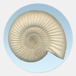 Perisphinctes Ammonite Classic Round Sticker