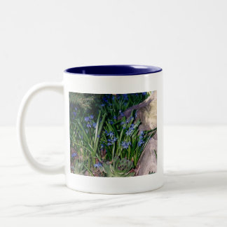 Periwinkles Mug