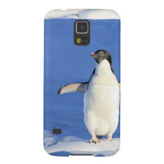 Perky Little Penguin Galaxy S5 Case