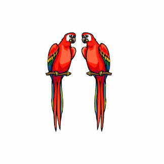 Perri & Perry Parrot Standing Photo Sculpture